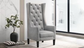 Hollywood Transitional Velvet Chair in Silver